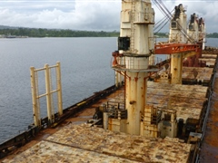 Logging vessel during biosecurity arrival clearance